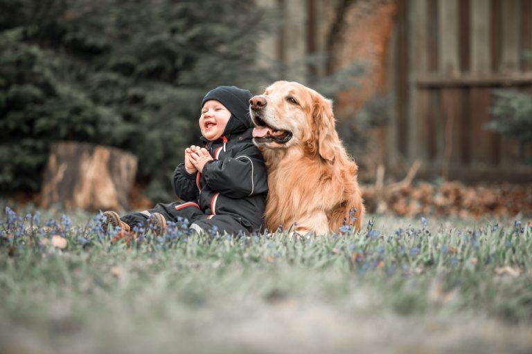 Pourquoi avoir un animal de compagnie est bon pour le développement de bébé